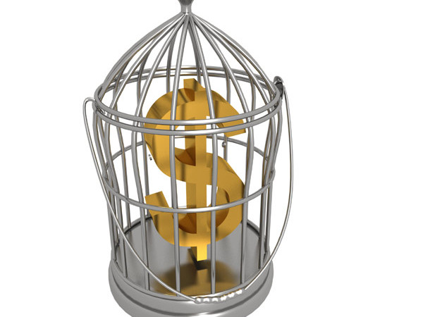 Dollar in cage – Free Picture