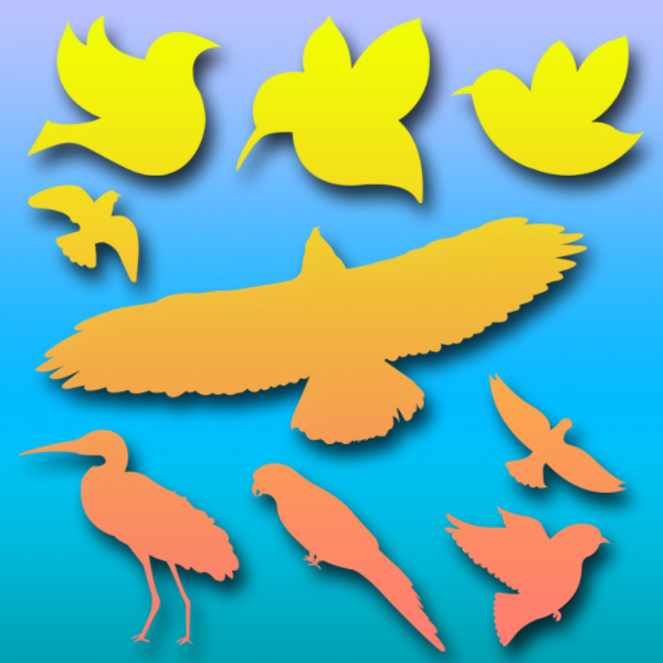 Birds Brushes