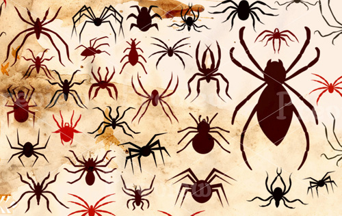 Halloween Spiders Brushes